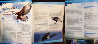 Sample Declamation 5 - Textbook